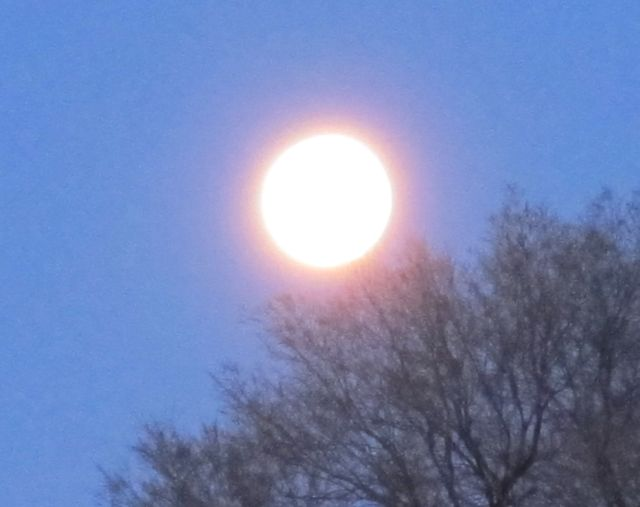 full moon setting in the dawn sky