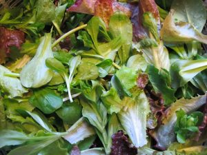 Ruffled red lettuce, mache, and arugula, all from Renee's Garden Seeds.