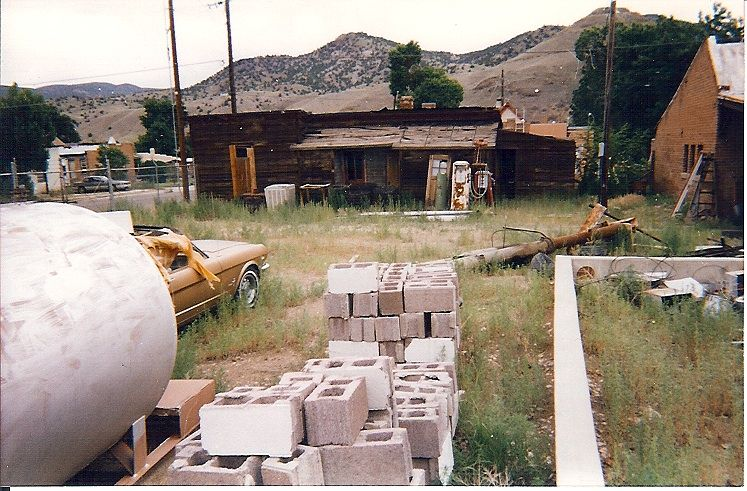 This decidedly junky and blighted property before we adopted it. (Or it adopted us. I've never been sure.)