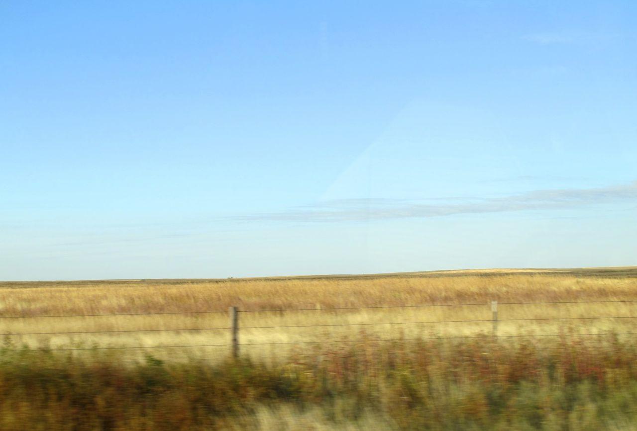 "Restored mountain prairie ""unlawn"" on a former industrial property."