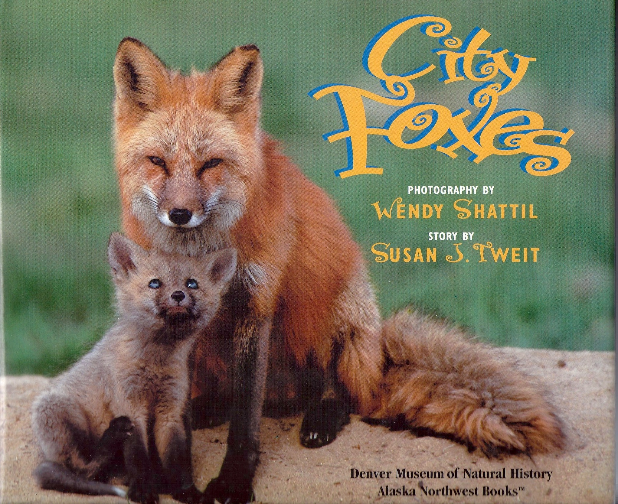 City Foxes, photos by Wendy Shattil, text by Susan J. Tweit, named Outstanding Science Trade Book for Children by the Children's Book Council