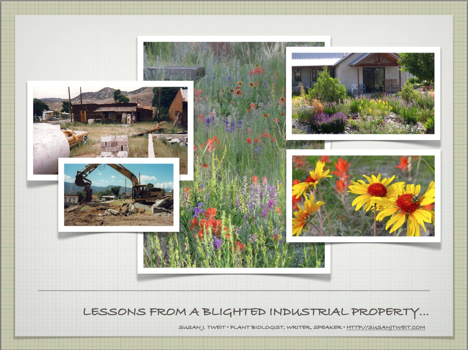 Inspiration and lessons from my own formerly blighted industrial property.