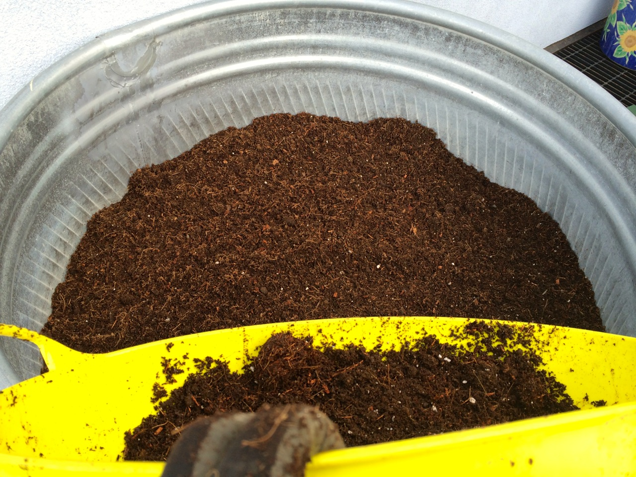 Dumping the soil mix, trug by trug, into the stock tank.