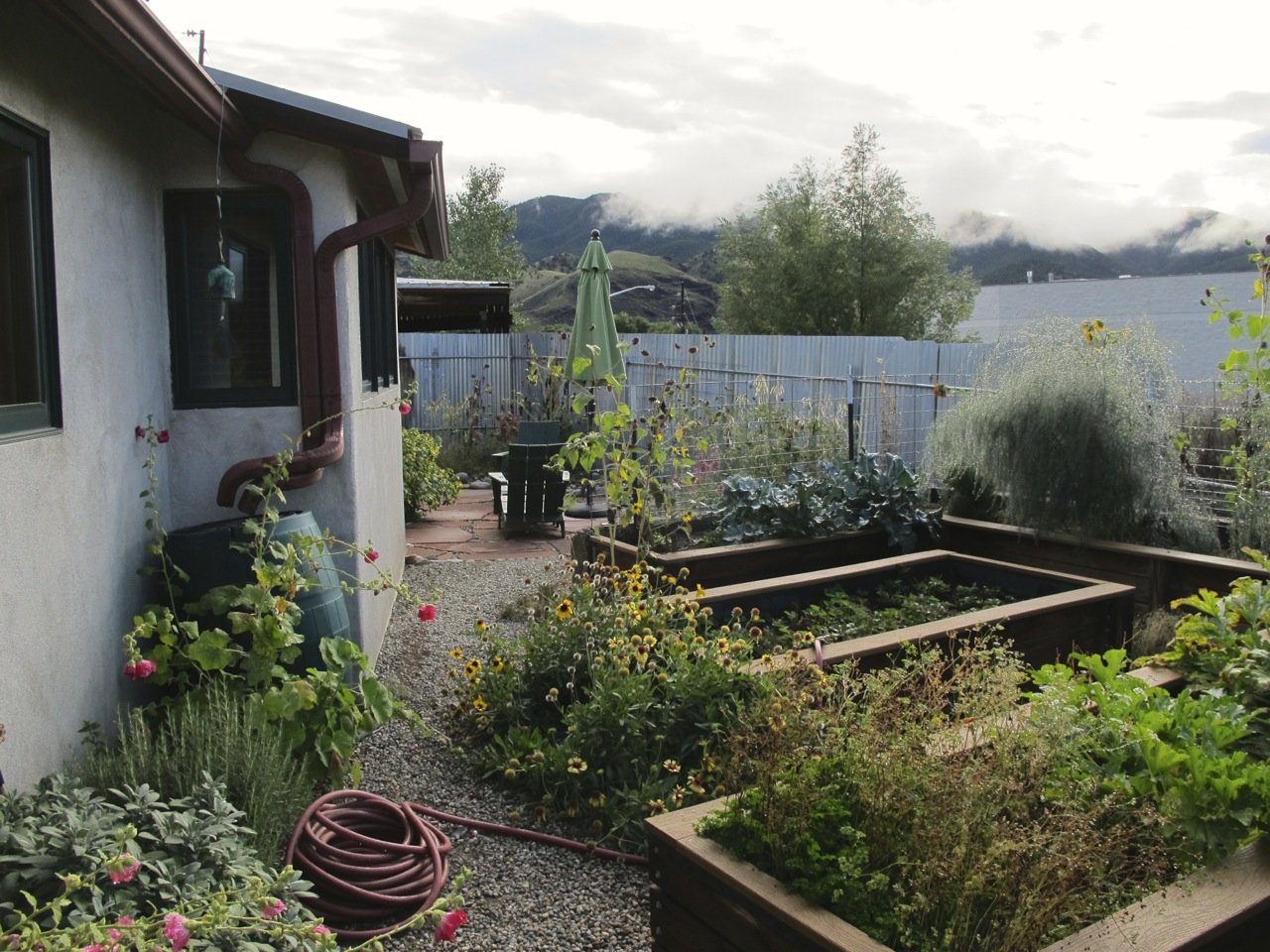 Part of the kitchen garden at Terraphilia in fall.