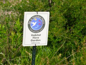The Habitat Hero sign on Ditch Creek.