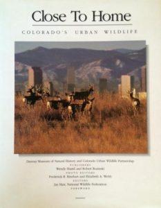 Close to Home: Colorado's Urban Wildlife